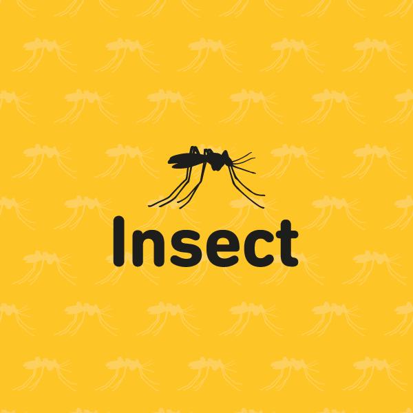 calidad insect